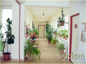 korytarz wpastelowych kolorach izkwiatami